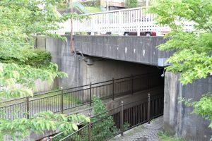 DSC_8239